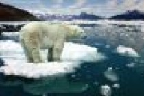 Buzullar erirse, deniz ne kadar yükselir?