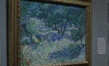 Van Gogh tablosunda çekirge bulundu