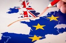 Brexit karşıtı yeni parti AP seçimleri için kampanyaya başladı
