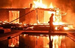 California'daki orman yangınlarında ölü sayısı 25'e çıktı