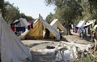 Norveç'teki Suriyeli sığınmacı Türkiye'ye...