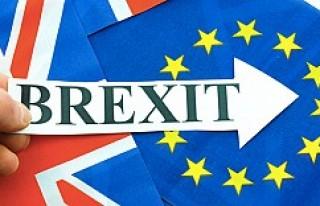 İngiltere'nin TTIP kararının Türkiye'ye...