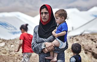 'Müslüman Mülteci' anketinde çarpıcı...