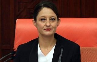 CHP'li Şafak Pavey'in Milletvekilliği...