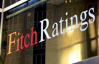 Fitch'ten kriz analizi: Dibi görmeye 2 yıl...