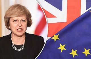 İngiltere, Gümrük Birliği'nden de ayrılıyor
