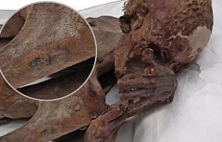 Beş bin yıllık dövmeler Londra'daki mumyalardan...