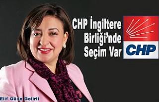 Elif Gülle Gelirli, CHP İngiltere Birliği Başkanlığına...