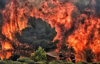 'Komşu'daki yangında ölü sayısı 77'ye...
