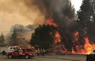California'daki orman yangını Paradise kasabasını...