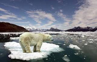 İklim Değişikliği: 'Okyanus ve denizler sanıldığından...