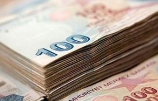 '2019 Türkiye ekonomisinin büyüyeceği bir...
