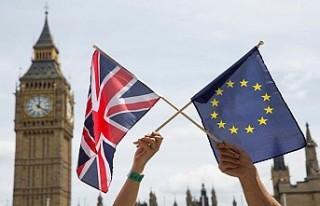 İngiliz siyasetine Brexit Partisi damga vuracak