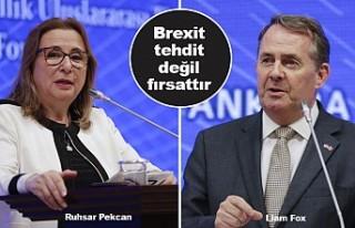 Türkiye-Birleşik Krallık Ticari İlişkilerinin...