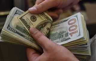AB'nin ticaretinde doların konumu güçlendi