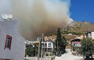 Marmara Adası'ndaki orman yangını yerleşim...