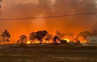 Avustralya'da yangınlar nedeniyle acil durum ilan...