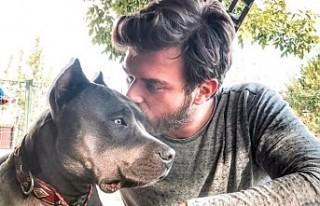 Köpeğinin kansere yakalandığını öğrenen Kıvanç...