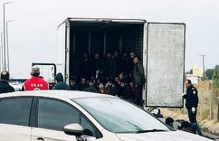 Türkiye'den gönderilen donduruculu tırda 41...