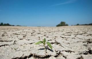 AB, iklim değişikliğiyle mücadele için yol haritasını...
