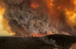 Avustralya'daki yangınlar 'hava sıcaklığını...