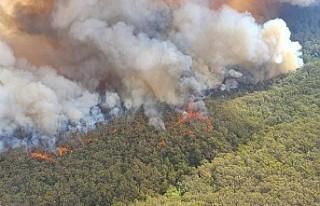 Avustralya'daki yangınlar nedeniyle yeni tahliye...