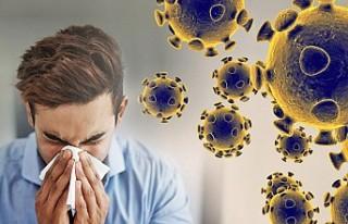 Koronavirüs Karantina Kuralları
