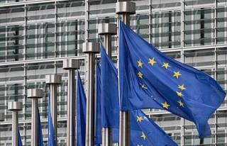 AB Komisyonu, üye ülkelerini uyardı