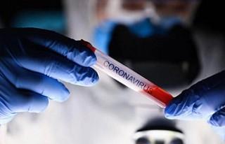 Koronavirüs artık daha tehlikeli