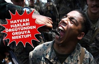 İngiliz Ordusuna 'Canlı Sürüngen Yemeyin'...