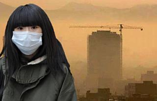 Her sekiz ölümden biri kirli havadan