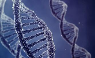 İnsan embriyosunun 'genleri değiştirilebilir'