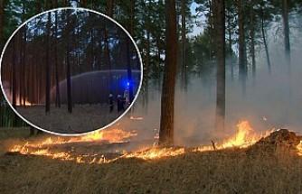 Almanya'da Büyük Orman Yangını