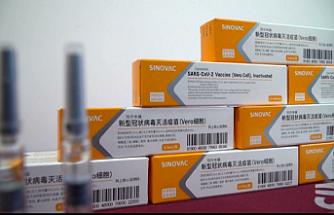 Endonezya, Sinovac'ın geliştirdiği Kovid-19 aşısının kullanımını onayladı