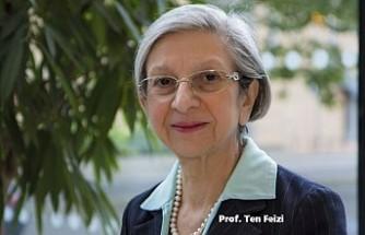 Kıbrıslı Türk Prof. Ten Feizi'ye Büyük Ünvan
