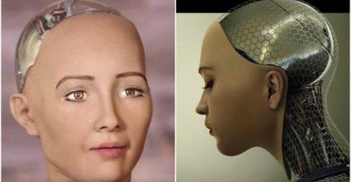 Robot Sophia 'İnsanlığın sonunu getirecek'